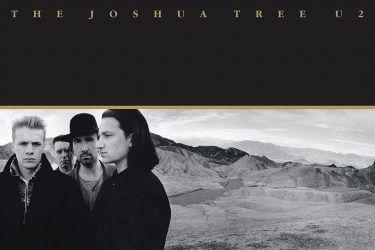 Joshua Tree Cover